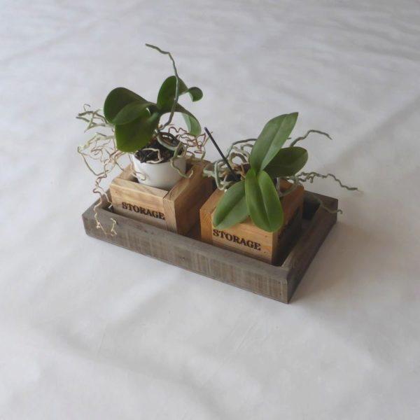 Dekorationsbakke lille lavet af genbrugstræ